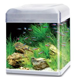 Hs Aqua Aquarium Lago 50 LED