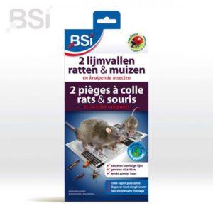BSI   2 lijmvallen voor ratten en muizen