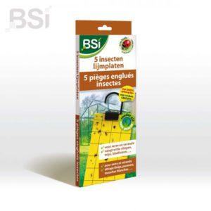 BSI  5 insecten lijmplaten