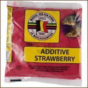 Van Den Eynde strawberry