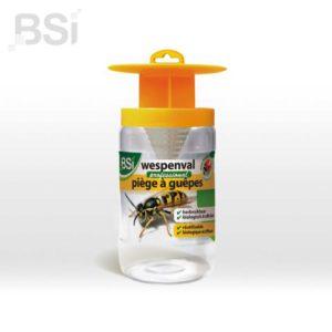 BSI  Wespenval