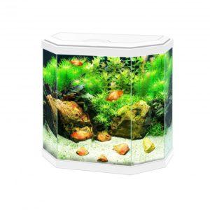Aquarium aqua 30 led  40x20x45,5CM