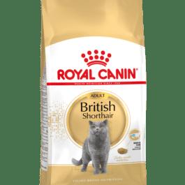 Royal Canin  Britisch Shorthair