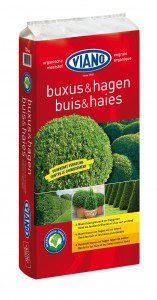 Viano Buxus & hagen