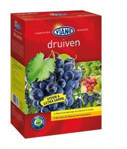 Viano   Druiven  1,5 kg