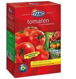 Viano  Tomaten 1,75 kg