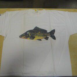 arca t shirt  karper large