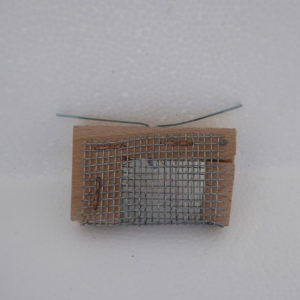 bijenhof   introductie iltis hout