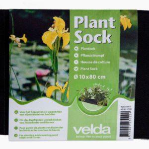 Plant sock  10 x 80