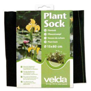Plant sock  15 x 80