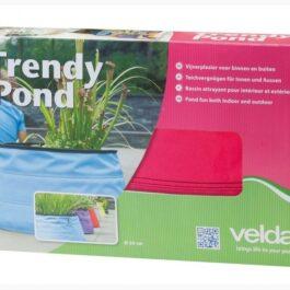 Trendy Pond