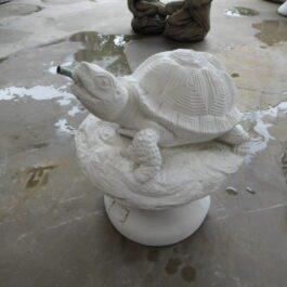 Schildpad witsteen