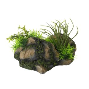 Aquascape combo 4