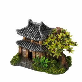 Asian House with plants