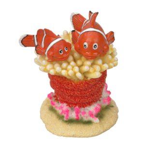 Clownfish 5
