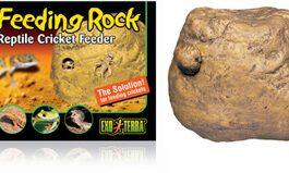 Exo Feeding Rock