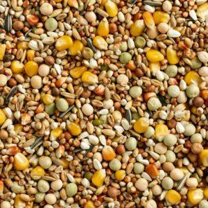 Natural Standard select 25 kg