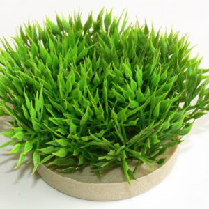 Sydeco Green moss 7 cm