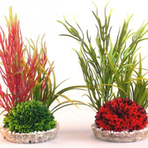 Sydeco Islet plant 22 cm