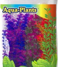 Aqua plant color  6st