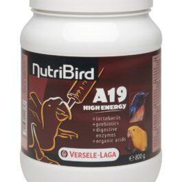 Nutribird A19 High Energy  800 gr