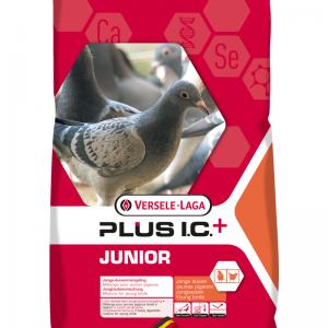 Junior plus I.C.+  20 kg