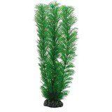 Plant Egeria 20 cm