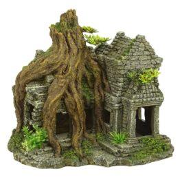 Ankor wat tree house