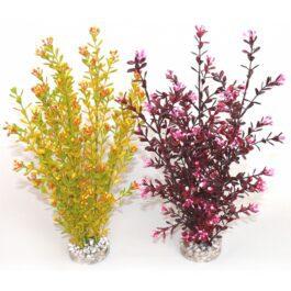 Sydeco Flowering Xl/36 cm