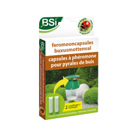 Feromooncapsules voor buxusmotten