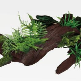 Wave plant Rainforest legno C / piante 3