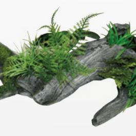 Wave plant Rainforest legno C / piante 4