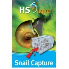 HSaqua snail capture